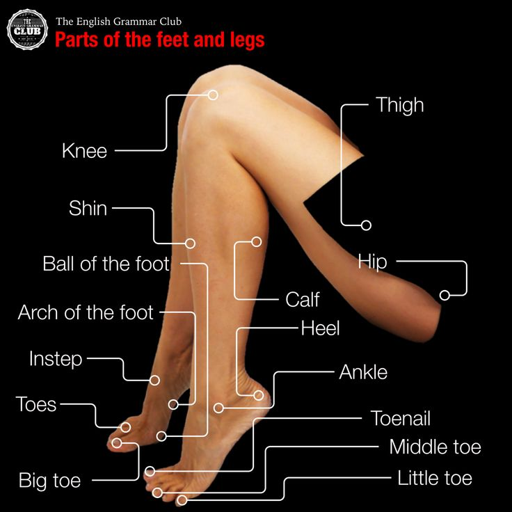 On this page you will find an infographic that shows you the parts of the feet and legs in English.