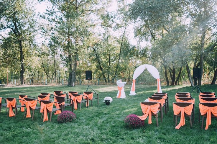 Выездная церемония бракосочетания на природе  Visiting the marriage ceremony in the nature