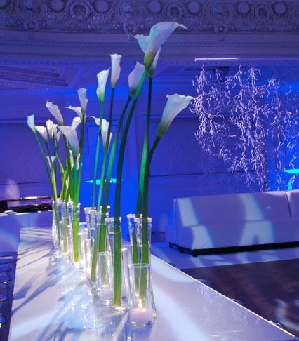 Less is more! We love the simplicity of these centerpieces against the bold uplighting.