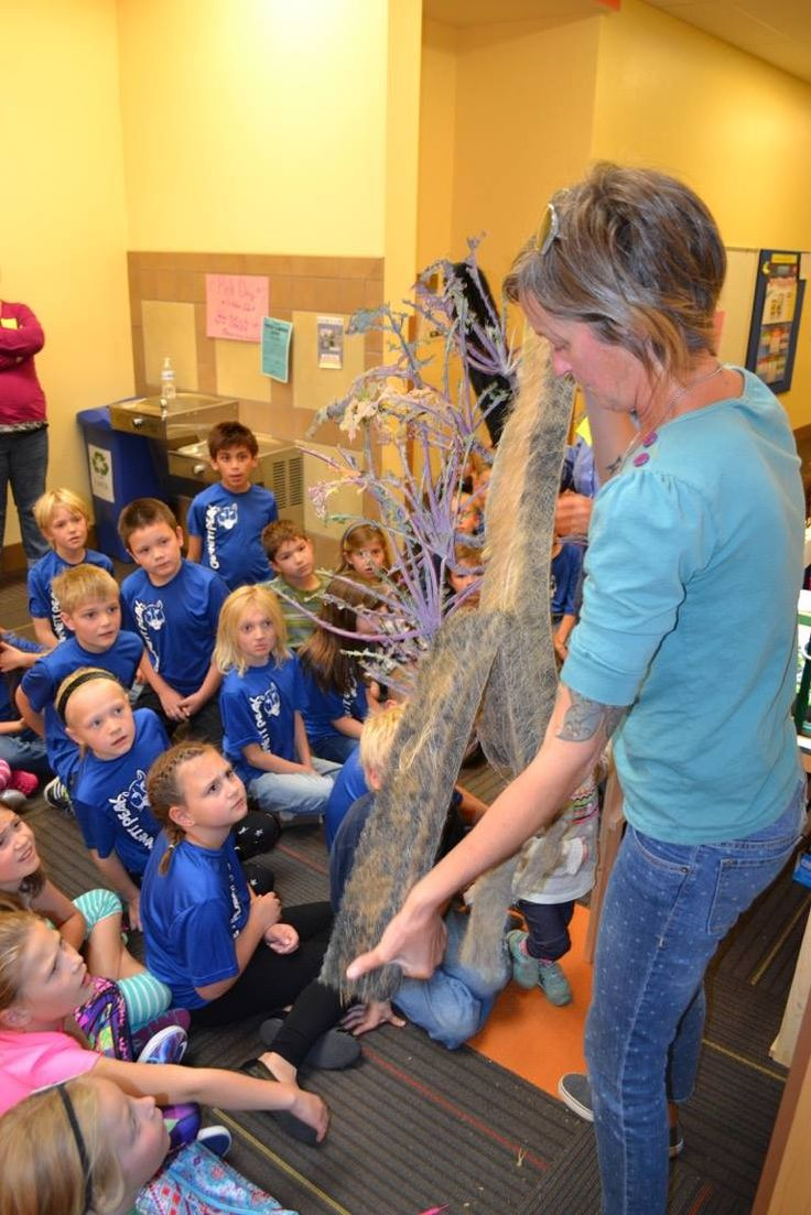Gannett Peak Elementary Students learn about #ZipGrow towers for their indoor garden.