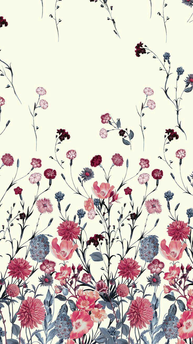 Wildflower Pattern Floral Background Flower Wallpaper Flower