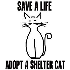 Save a Life/Adopt a Shelter Cat