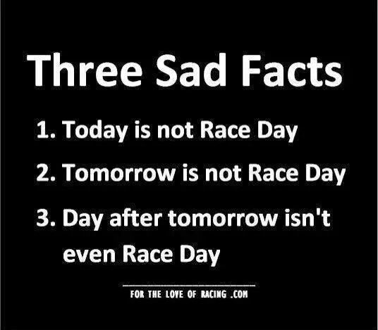 Racing Quotes Best 25 Racing Quotes Ideas On Pinterest  Dirt Racing Dirt .