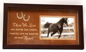 Afbeeldingsresultaat voor horse shadow box