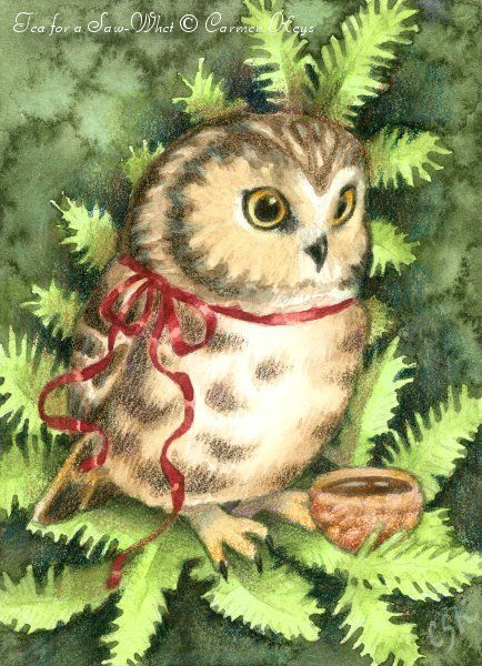 Tea for a Saw-Whet ACEO