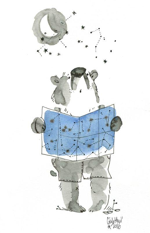 stupid bear étoiles, Cécile Hudrisier
