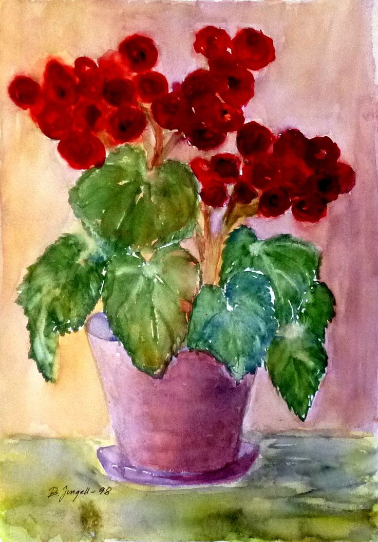 """Begonia"" Original watercolor painting by Britta Bergström-Jungell."