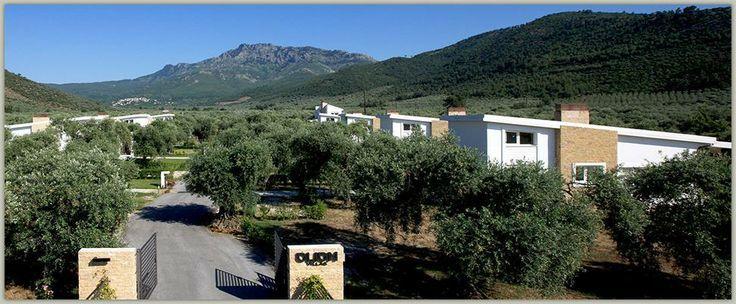 Novalis Terra - Συγκρότημα εξοχικών κατοικιών στη Θάσο - Εξωτερική θερμοπρόσοψη με σύστημα Thermomaster (2014)