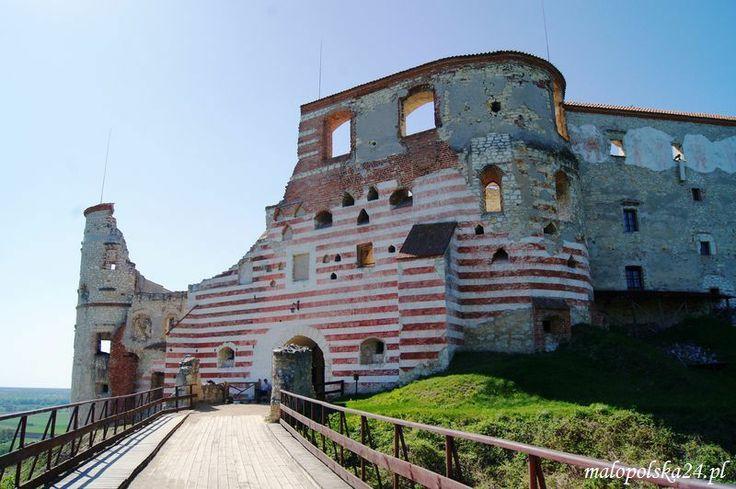 Zamek w Janowcu (woj. lubelskie) był siedzibą magnackich rodów Firlejów, Tarłów i Lubomirskich. W XVI wieku basteja posiadała jeden z najnowocześniejszych systemów obronnych. Za czasów Lubomirskich ponad 100 zamkowych komnat pyszniło się wspaniałym wyposażeniem, a w olbrzymiej jadalni wydawano niezapomniane uczty. http://www.malopolska24.pl/index.php/2013/03/zamek-w-janowcu/