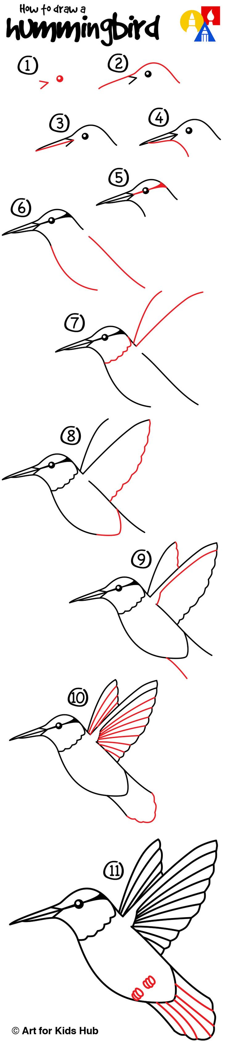 How to draw a hummingbird!