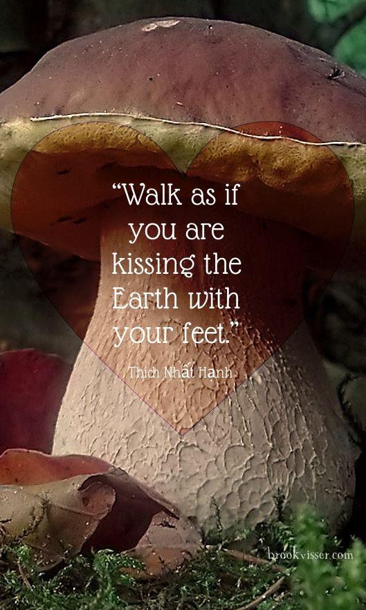 Walk lightly with gratitude.