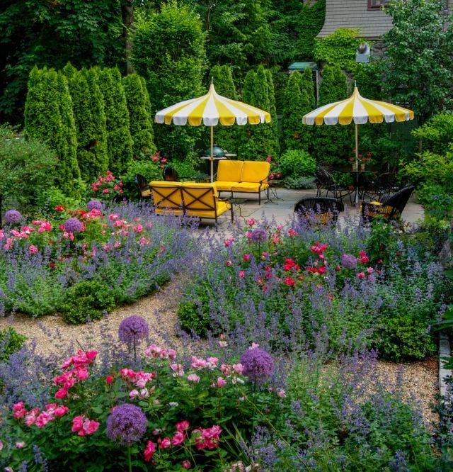 Hecken Sichtschutz Heckenpflanzen Garten Lebensbaum Thuja Garten