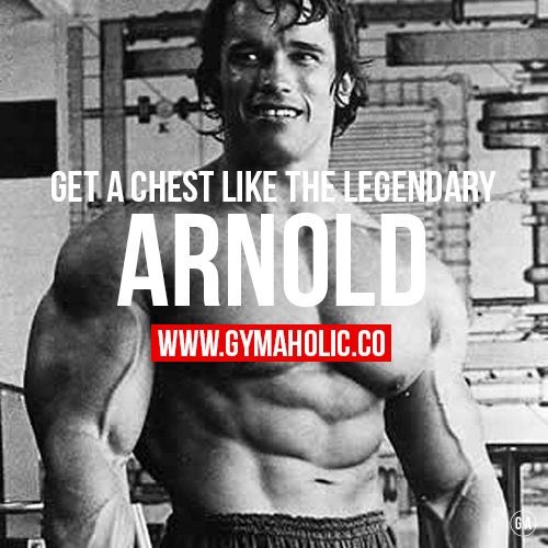 Best 25+ Arnold Schwarzenegger Chest Workout Ideas On