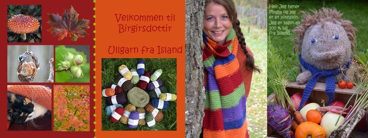 G. Birgirsdottir 6 typer islandsk garn + oppskrifter, strikketilbehør +++