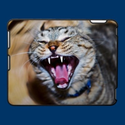 Laughing or Screaming Cat iPad Cover
