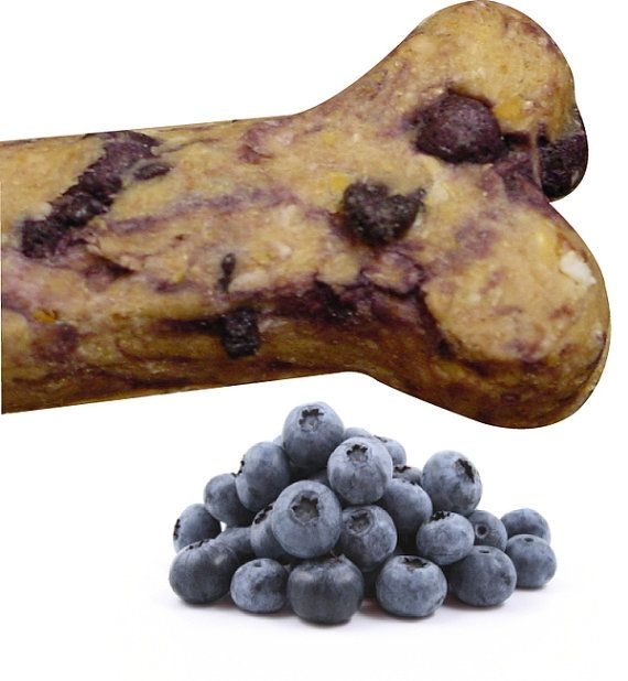 Blueberry Gourmet Dog Treats... Don't worry, I have done a web search and almost all of the results I got said blueberries are great for dogs!