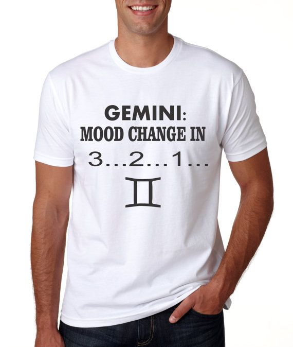 Personalized Tshirt Astrology Gift Idea  For that Random and Moody Gemini…