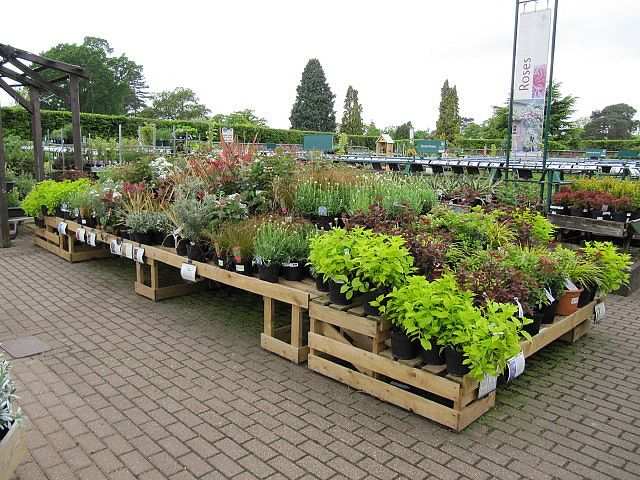 garden center display benches photo