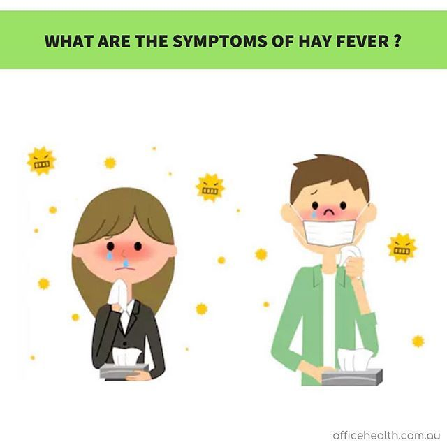 Hay Fever Also Known As Allergic Rhinitis Is Not Caused By Hay And Does Not Result In Fever It Is Caused By The Allergic Rhinitis Itchy Nose Hay Fever