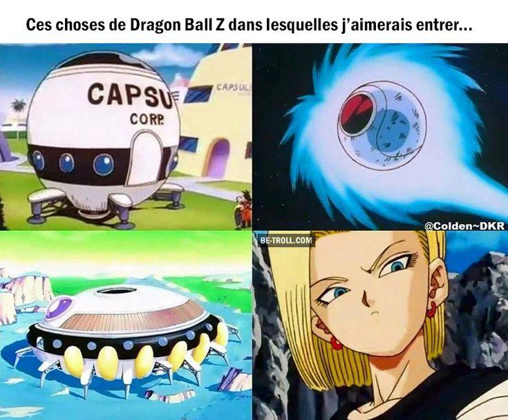 Ces choses de Dragon Ball Z dans lesquelles j'aimerais entrer…   Be-troll