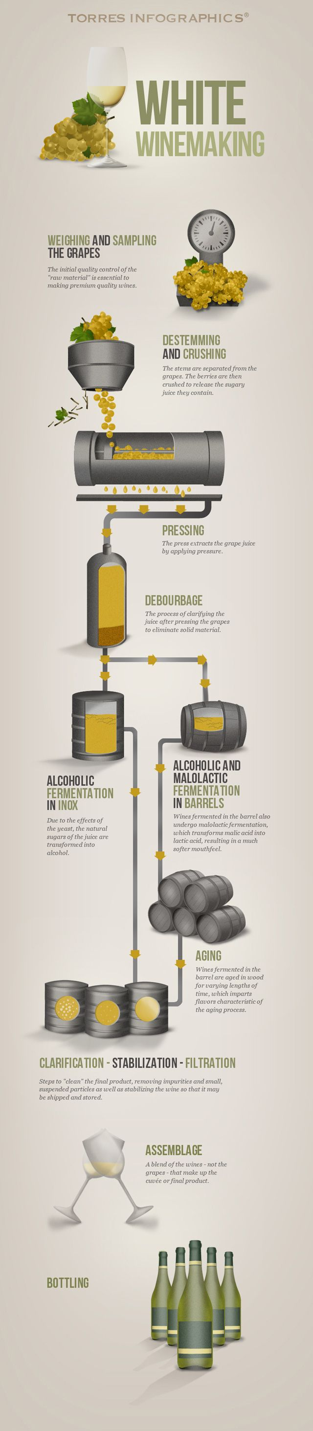 How white wine is made - Torres Wine Club | Your direct link to the world of wine