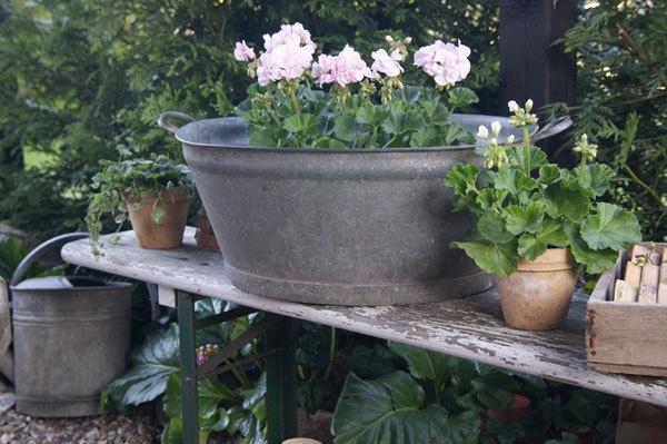 Galvanized Tub with Flowers