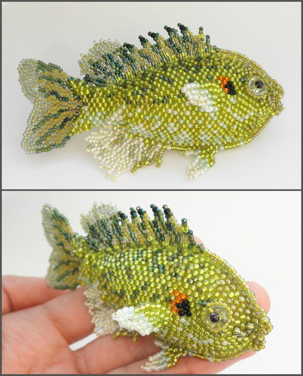 Redear fish by Rrkra.deviantart.com on @deviantART