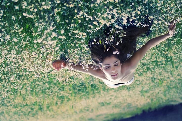Butterfly effect  By Alexandra Mascia