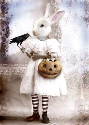 Art Print, Halloween Decorating - Abigail Bunny and her pet Crow/Raven, Blackie. Catching Stars.