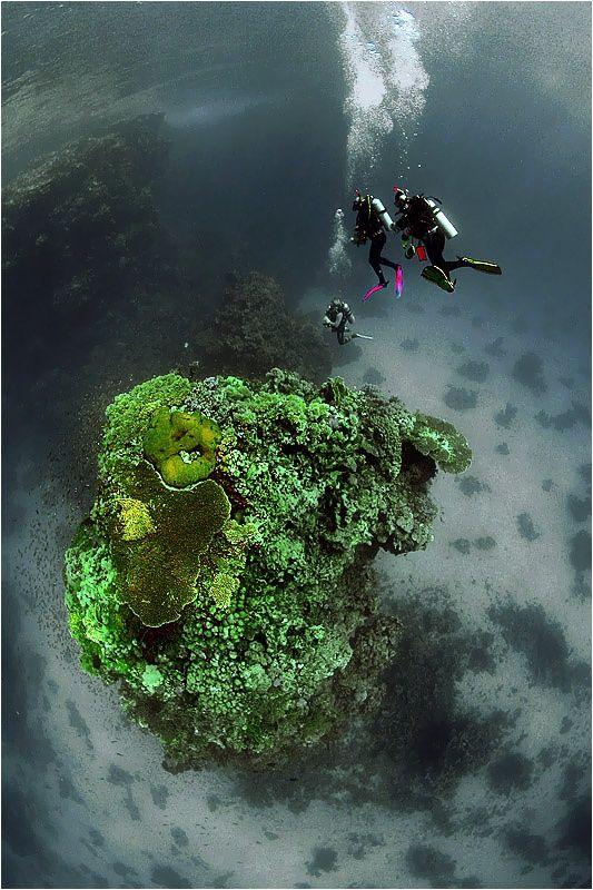 Эрги рифа St. Johns by Sergiy Glushchenko on 500px
