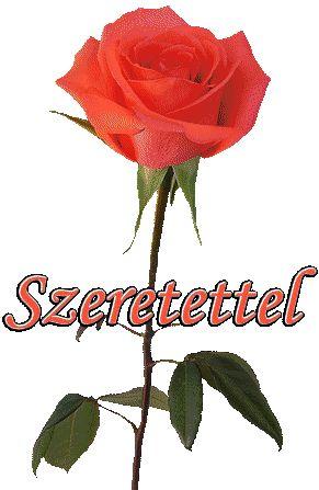SZERETETTEL