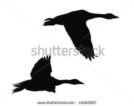 flying goose silhouette free vector for free download about 5 sillouttes pinterest flying geese silhouettes and free