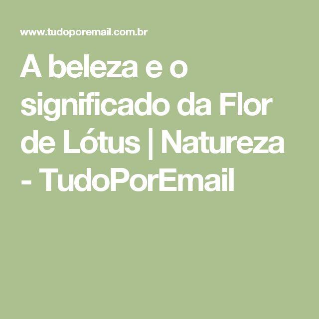 A beleza e o significado da Flor de Lótus | Natureza - TudoPorEmail