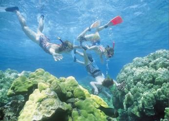 Snorkling, Cook Islands