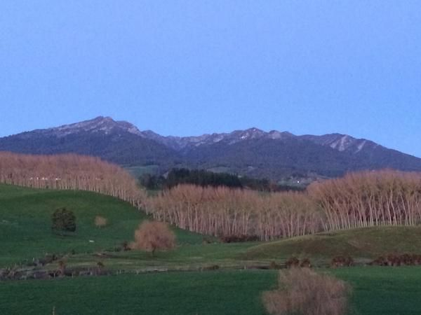 """Newshub on Twitter: """"Snow dusts the top of Mt Pirongia, 21 Jul 2014"""