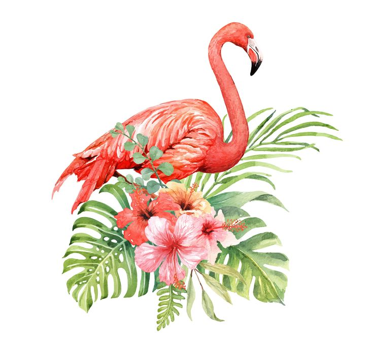 Short-term Tattoo – Flamingo Floral Tattoo – Faux Tattoo – Hen Social gathering