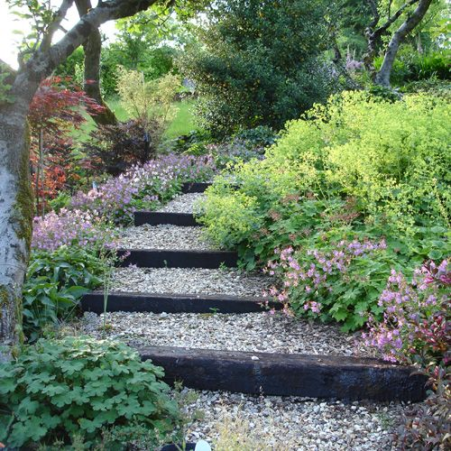 'This flight of steps is part of a wide, steeply sloping front garden near Cheddar Gorge in Somerset. It was designed and constructed in 2004 and planted up over the following 2 years. The steps give easy access down the slope between large drifts of herbaceous perennials and low growing evergreen shrubs. '