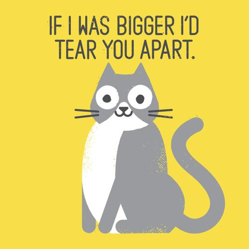 """""""Purrfectly Honest"""" by David Olenick"""