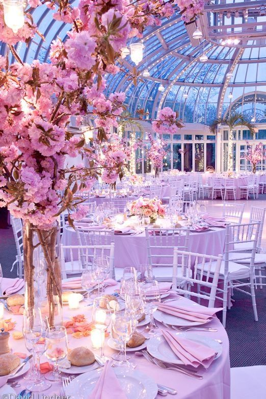 spring time blossom. This greenhouse makes an ideal venue for a spring time wedding with lots of fresh flowers.