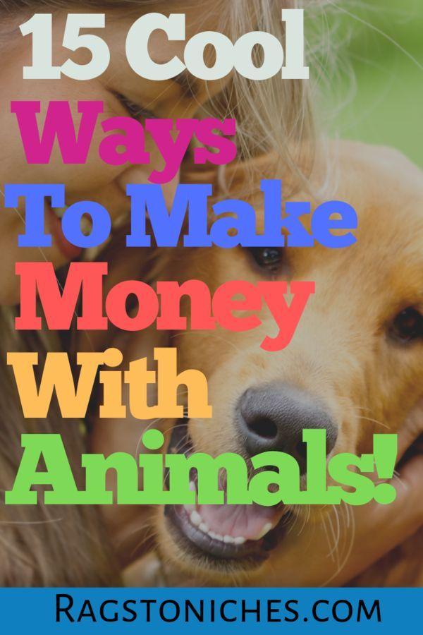 15 Möglichkeiten, Geld mit Tieren zu verdienen (ohne Abschluss!). – Lumpen in die Nische – Money