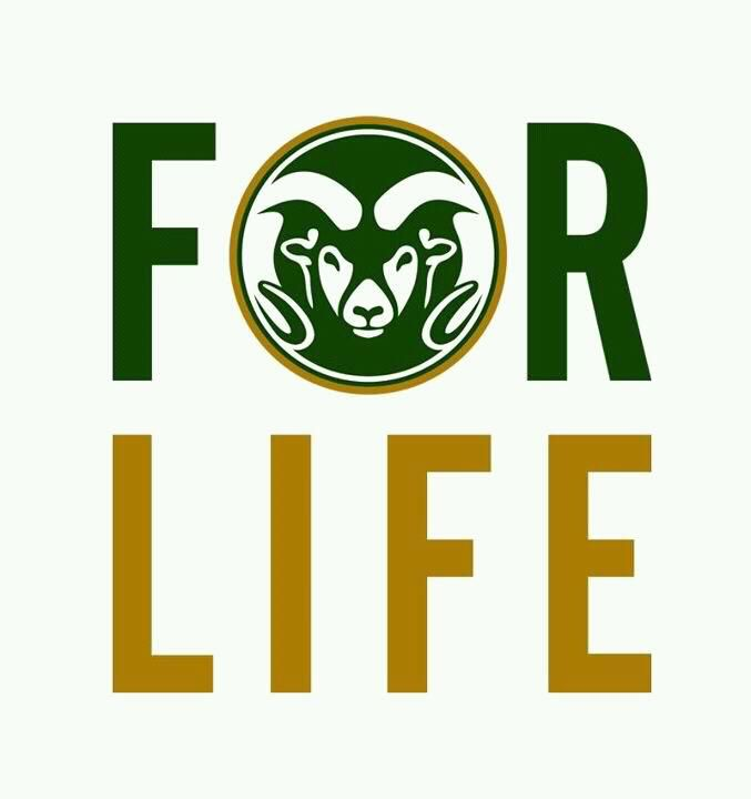colorado state university essay Whether you've always known you would attend colorado state or whether you're applying to several universities, it all starts with a simple application.
