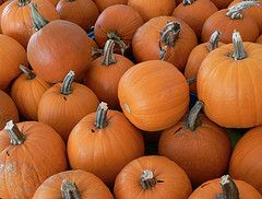 Photo: the_girl on Flickr You know fall has officially arrived when the leaves begin to change color, the weather starts to grow crisp and the smell of bonfires fill the air. And nothing symbolizes the season better than pumpkins. From pumpkin pie and pumpkin-flavored lattes to jack-o-lanterns and Halloween decorations, pumpkins are everywhere by the [...]