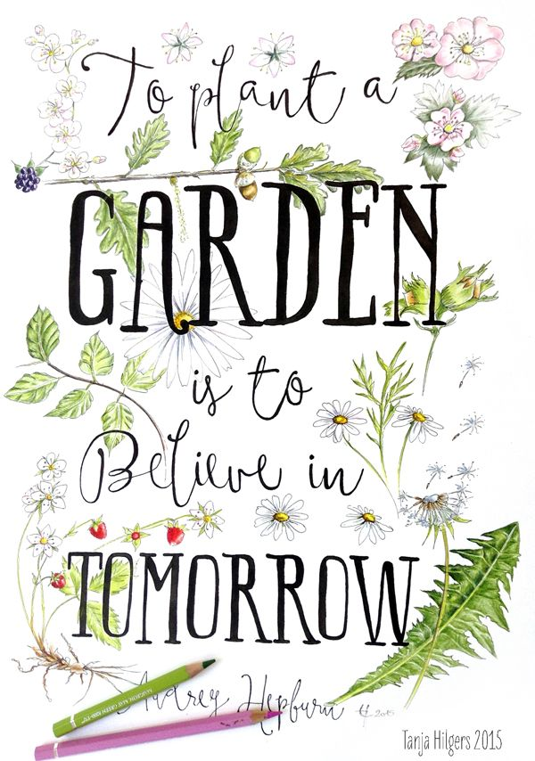 Illustrated quote. To plant a Garden is to believe in Tomorrow. Audrey Hepburn www.tanjahilgers.nl