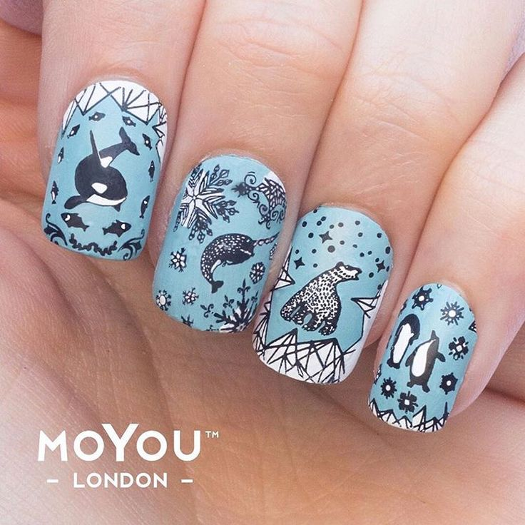 how to use moyou nail stamps