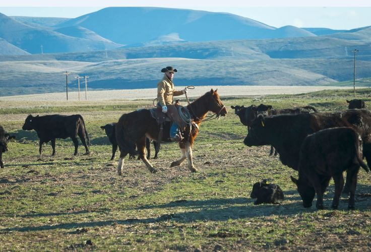 Over-regulation by the government and extreme environmentalist groups leads to hardships for ranchers