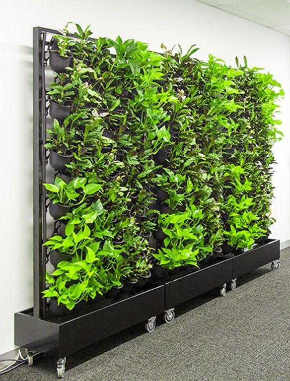 7c1cf75e6466896dc19580edc71ae576 - How To Start A Gardening Business Australia
