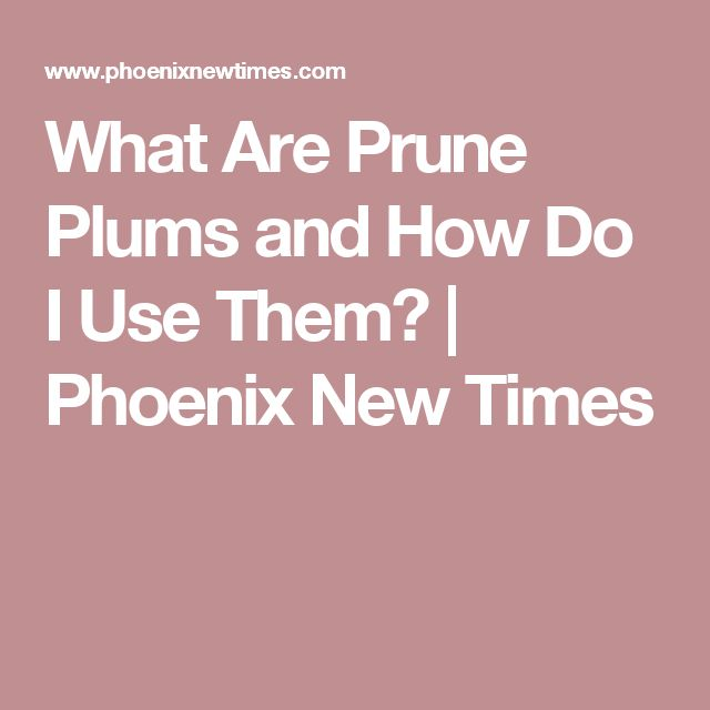 What Are Prune Plums and How Do I Use Them? | Phoenix New Times