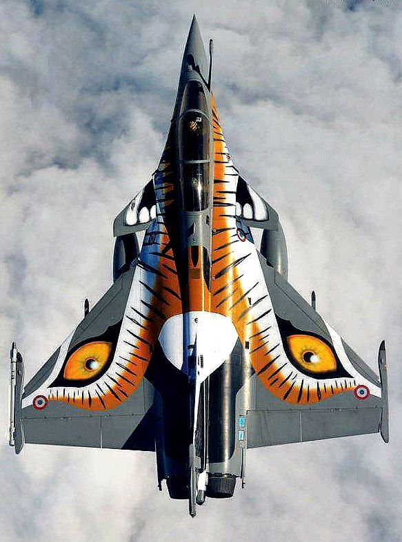 Winged Tiger