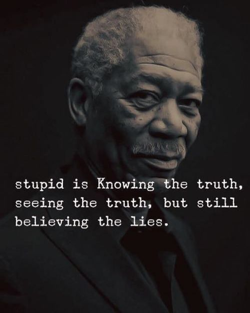 Stupid is knowing the truth, seeing the truth, but still believing the lies. | The Inspirational Quotes For Life