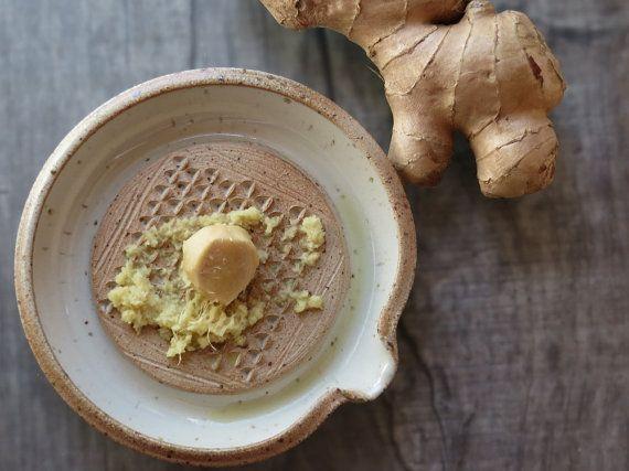 Ginger grater ceramic ginger garlic grating dish by toscAnna